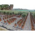 Træ 80-100 cm stamme, 40-45 cm kugle, ca. 7 cm. st. omf., T160-180, 24ø